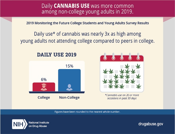 MTF graphic ; Daily cannabis use among college aged students