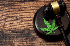 marijuanaleafandgavel_article